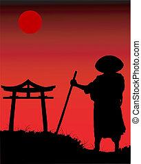 silhouette, chinois, night.