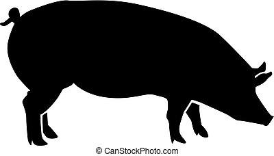 silhouette, cochon