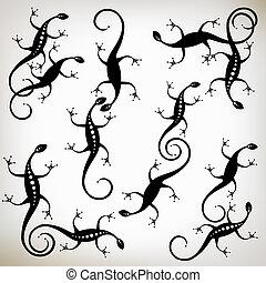 silhouette, collezione, disegno lucertola, nero, tuo