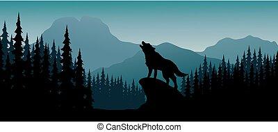 silhouette, collina, animale, notte
