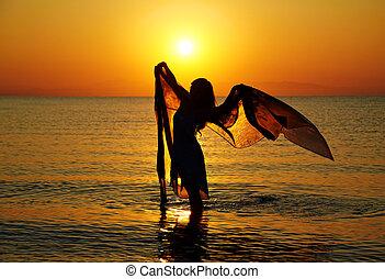 silhouette, coucher soleil
