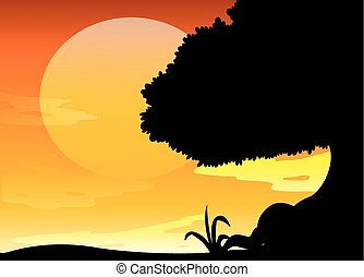 silhouette, coucher soleil, scène