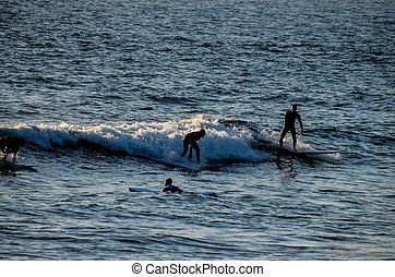 silhouette, coucher soleil, surfeur