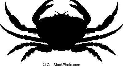 silhouette, crabe