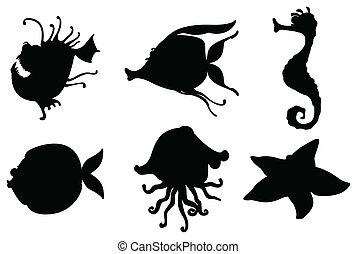 silhouette, creature mare