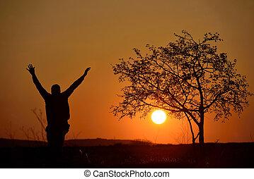 silhouette, de, a, arbre, et, a, homme, dans, coucher soleil, fond