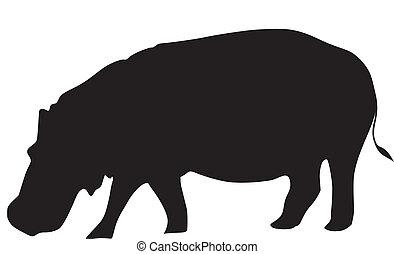 silhouette, de, hippopotame