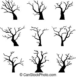 Silhouette Dead Tree without Leaves