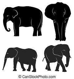 silhouette., decorativo, ornamental, elefantes