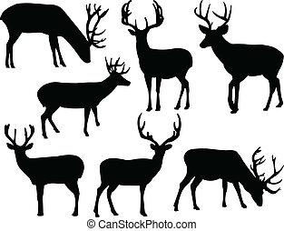 silhouette, deers