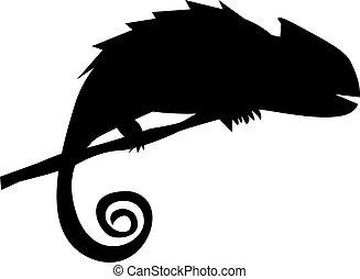 silhouette, di, camaleonte, su, il, ramo