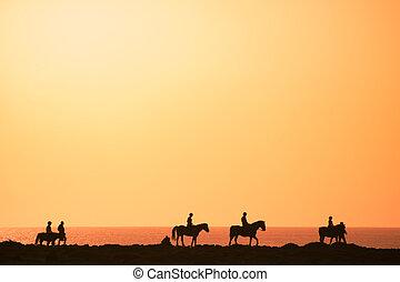 silhouette, di, il, cavalieri equini