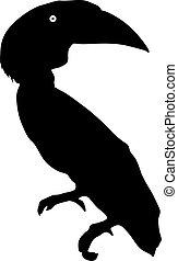 silhouette, di, il, uccello, tucano, su, uno, sfondo bianco