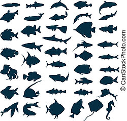silhouette, di, mare, e, lago, fishes., uno, vettore, illustrazione