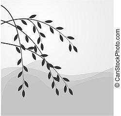 silhouette, di, salice, ramo