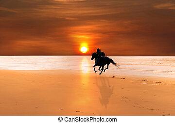 silhouette, di, uno, cavallo cavaliere, galloping