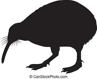 silhouette, di, uno, uccello, kiwi