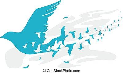 silhouette, disegno, uccelli, illustrazione