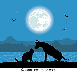 silhouette, dog, kat