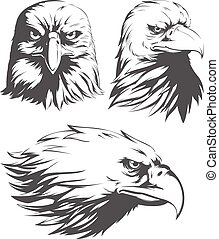 Silhouette Eagle Head Falcon Front Sideview Set Isolated Vector Logo Mascot Badge