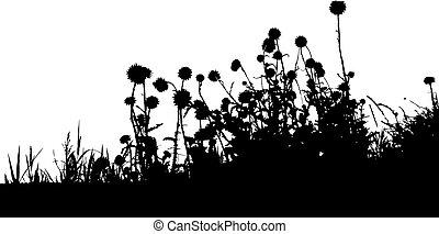 silhouette, erba, nero