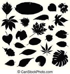 silhouette, feuilles, divers, types