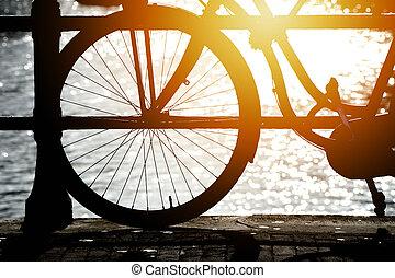 silhouette, fiets, zonlicht