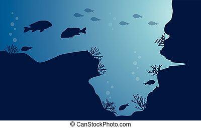 silhouette, fish, vario, paesaggio