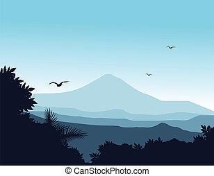 silhouette, fond, nature
