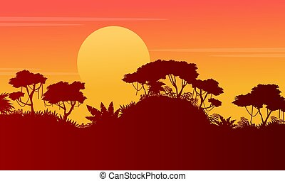 Silhouette forest scenery at sunset