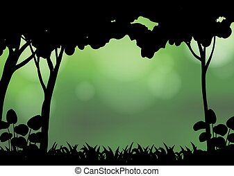 Silhouette forest