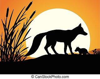 silhouette, fox.