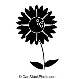 silhouette gerbera flower natural