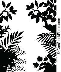 silhouette, giungla