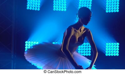 Silhouette graceful ballerina dancing elements of classical ballet in the dark with blue light and smoke on the background. Close up.