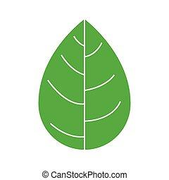 silhouette green leaf flat icon