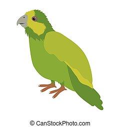 silhouette green parrot animal bird