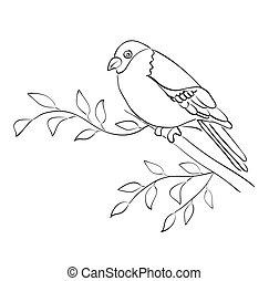 silhouette, haussperling, sitzen, -, vektor, zweig, vogel