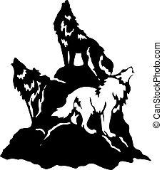 silhouette, heulen, drei, hintergrund., hügel, wölfe, weißes