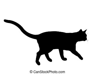 silhouette, illustration, chat