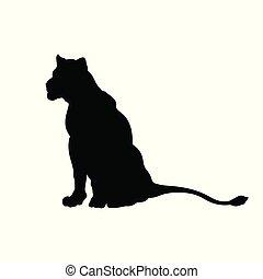 silhouette, image., leonessa, seduta, isolato, cat., fondo., leone, nero, africano, animali selvaggi, bianco, icona