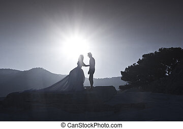 Silhouette image of a bride and groom
