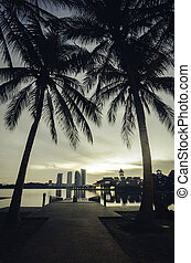silhouette image of coconut tree at lakeside with building reflection on the lake. jetty and yellow color on the sky during sunrise