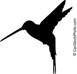 silhouette, kolibri