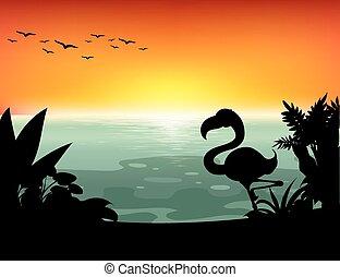 Silhouette lake