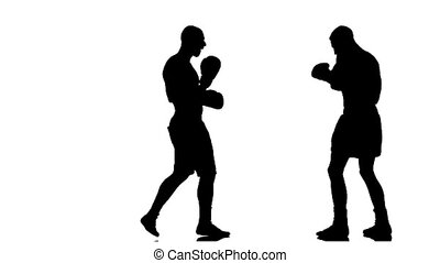 Silhouette. Men boxers train punches and kicks. Slow motion