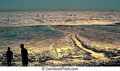 silhouette men walk on beach when sunset and ebb tide