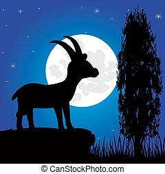silhouette, montagna, cavalletto, luna, in, il, notte