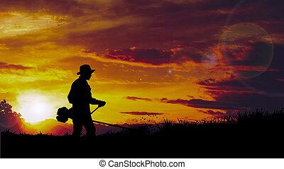 silhouette, (mowing, holle weg, grass), gras, man