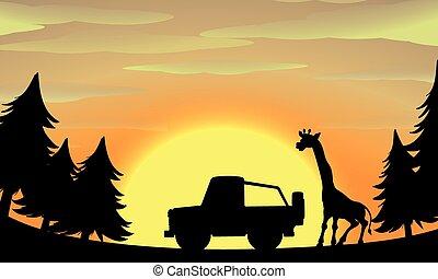 Silhouette nature scene with giraffe and jeep